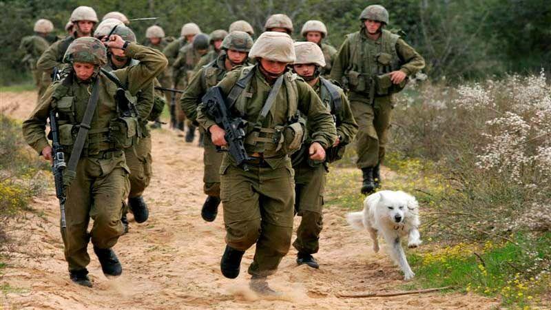 """مسؤول عسكري صهيوني: إصابة ثرواتنا الاستراتيجية سهلة على """"أعدائنا"""""""