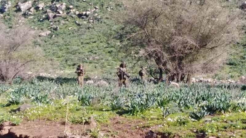 قوة مشاة صهيونية تتجاوز السياج التقني في منطقة نهر الوزاني