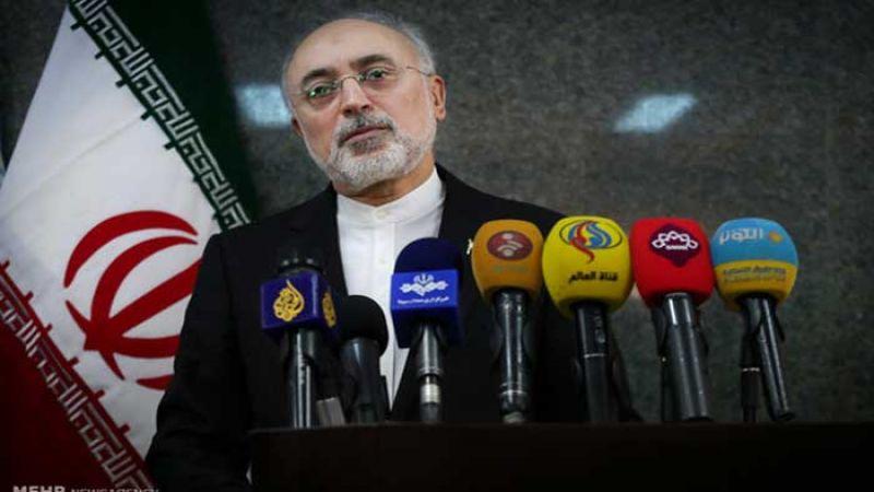 صالحي يكشف عن إنشاء محطتين جديدتين للطاقة في بوشهر