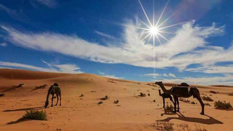 بدلًا من النفط.. السعودية تنشّط قطاعها السياحي