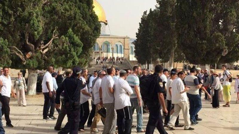 عشرات المستوطنين يقتحمون الأقصى.. ودعوات للتصدي للاقتحامات الصهيونية المتكررة