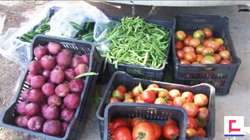 سوق المزارع في الهرمل.. ما هي الميزات؟