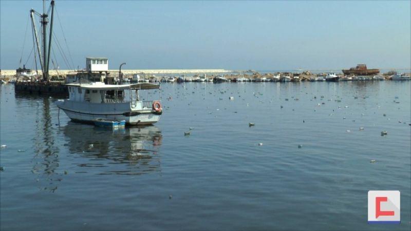 بعد تفاقم أزمة النفايات.. شباك صيادي الأسماك في الميناء هجرت البحر