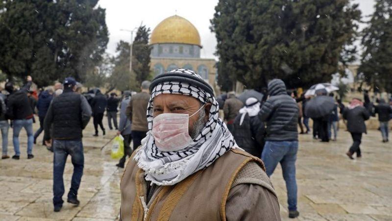 """117 إصابة بـ""""كورونا"""" في فلسطين المحتلة"""