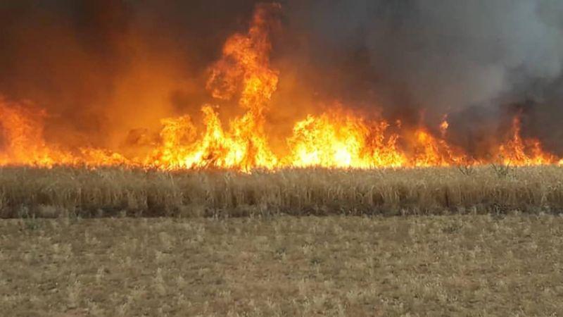 تركيا تحرق مئات الدونمات الزراعية غرب رأس العين السورية