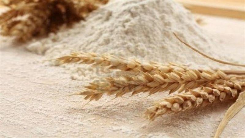 خصخصة مطاحن الدقيق بدأت في السعودية فهل يرتفع سعر الخبز أيضًا؟