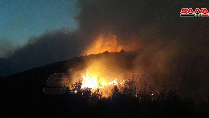 """مدير الاحراج في وزارة الزراعة السورية لـ""""العهد"""": حرائق الغابات مفتعلة"""