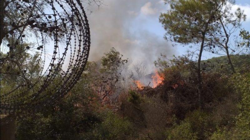 بالصور: العدو الصهيوني يحرق أكثر من 40 دونمًا في أحراش اللبونة