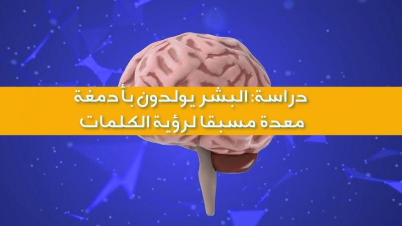 دراسة: البشر يولدون بأدمغة معدة مسبقًا لرؤية الكلمات