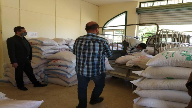 """مشروع """"غلال"""" متواصل .. توزيع البذور للمزارعين في الهرمل"""
