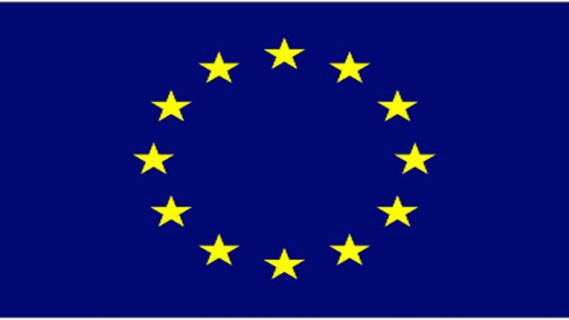 الاتحاد الاوروبي: اغتيال العالم الإيراني البارز عمل اجرامي