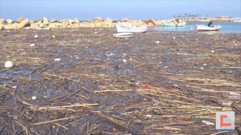 ماذا حلّ بمرفأ صيادي الأسماك في طرابلس عقب العاصفة؟
