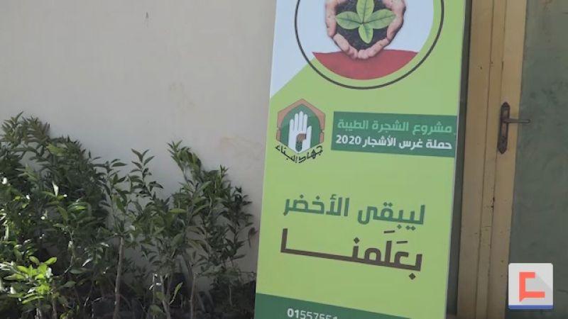 الأشجار المثمرة.. هدية جهاد البناء للأهالي مع بداية العام