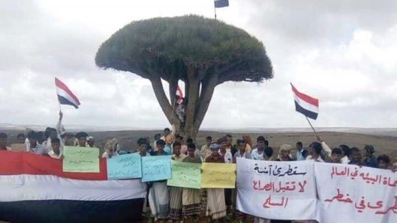 احتلال إماراتي يسعى لتغيير هوية جزيرة سقطرى اليمنية