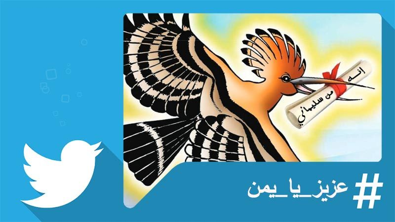 من اليمن.. هنا فلسطين