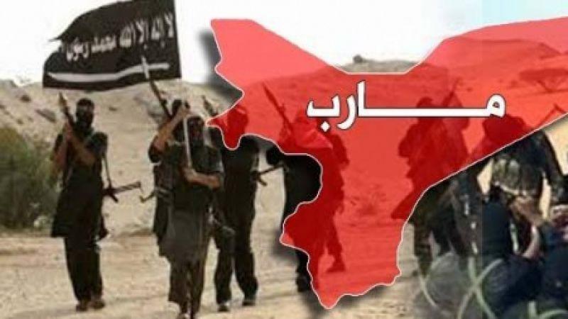 """المخابرات اليمنية تفضح هيكلية """"القاعدة"""" في مأرب"""