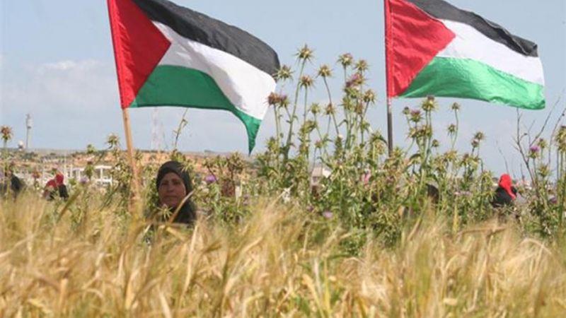 إلى شهداء يوم الأرض عام ١٩٧٦.. فلسطين