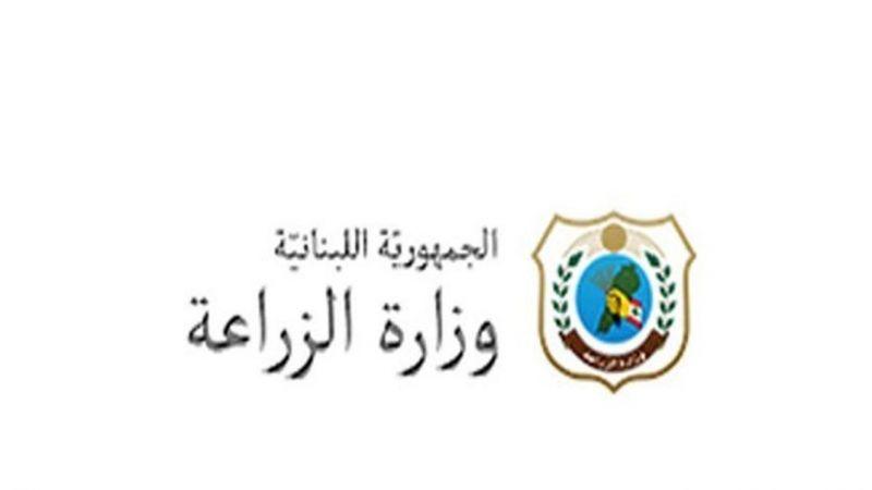 وزارة الزراعة تتخذ تدابير احترازية لمواجهة موجة جراد محتملة