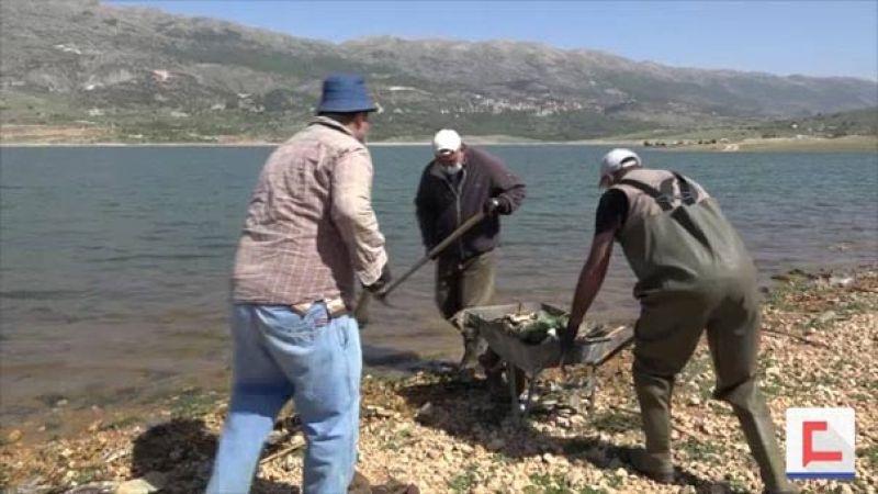المصلحة الوطنية لنهر الليطاني تنظم حملة رفع الأسماك النافقة من بحيرة القرعون