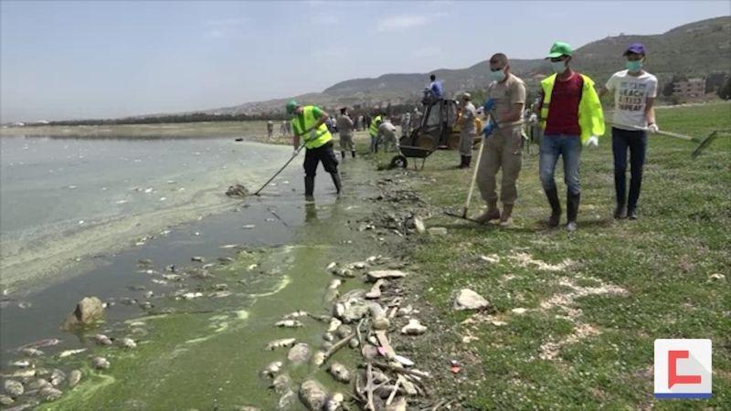 ماذا بعد كارثة نفوق أسماك الكارب في بحيرة القرعون؟