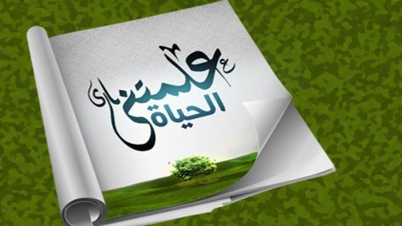 هدى ميقاتي: شاعرة في زمن أحمق ولا ترتكب جريمة القصيدة