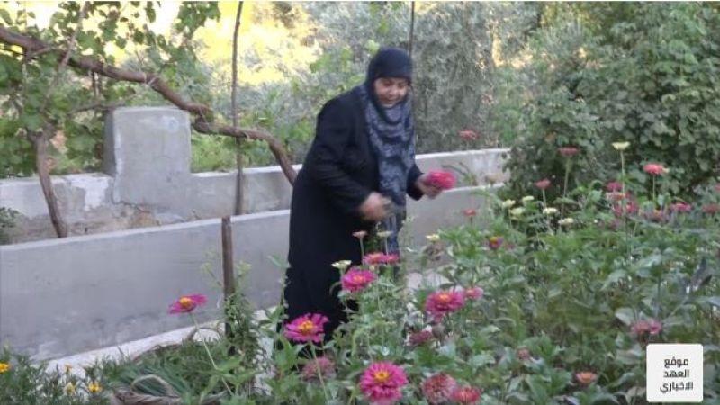 الزهورات.. علاج طبيعي من خيرات الأرض