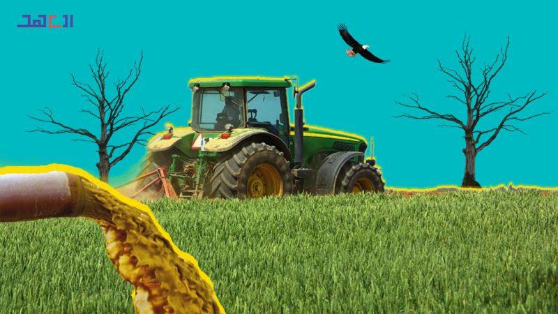 المحاصيل الزراعية ملوّثة بأبشع أنواع الصرف الصحي.. فهل تتحرّك الدولة؟