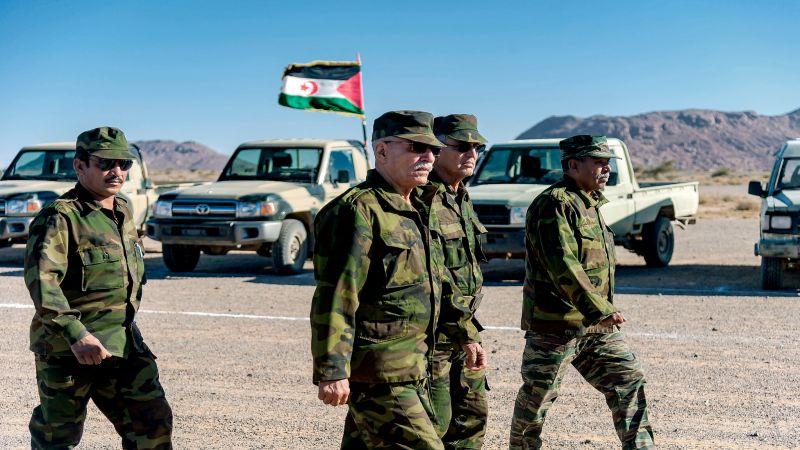 """الجزائر للمغرب: كفّوا عن الكذب.. لا علاقة لحزب الله بـ""""البوليساريو"""""""
