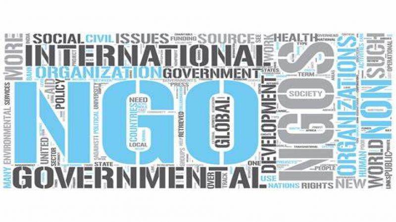 الـ NGOs بين المفهوم والشبهات