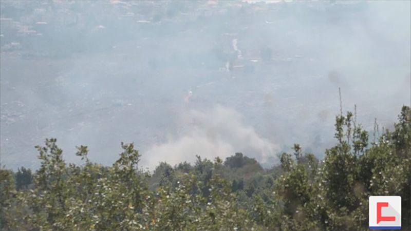 اعتداء على غابات كفرشوبا.. قطع جائر للأشجار والدولة تغض الطرف