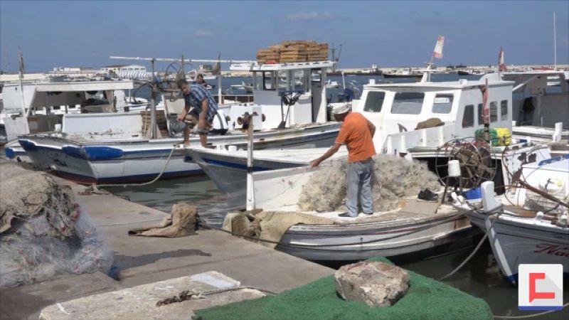 صيادو أسماك طرابلس يشكرون السيد نصرالله بعد تخصيص مازوت لقواربهم