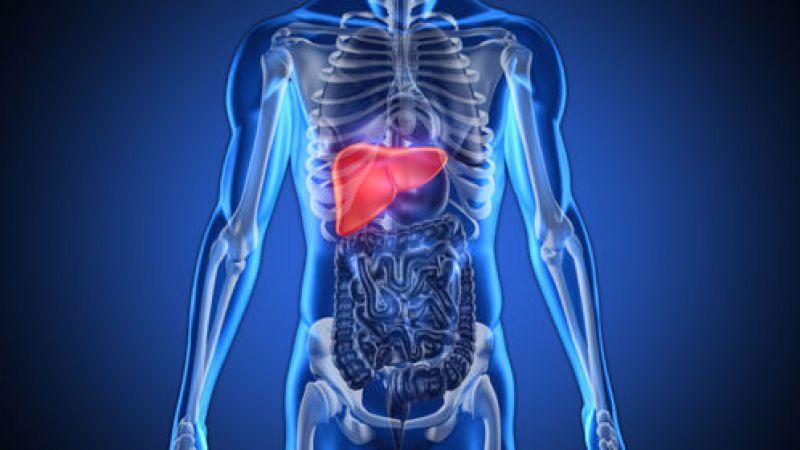 اكتشاف جديد يغني عن عمليات زراعة الكبد