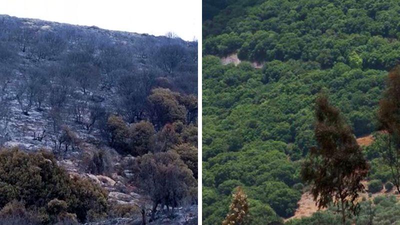 وادي الحجير يحترق .. تعددت الأسباب والنتيجة واحدة