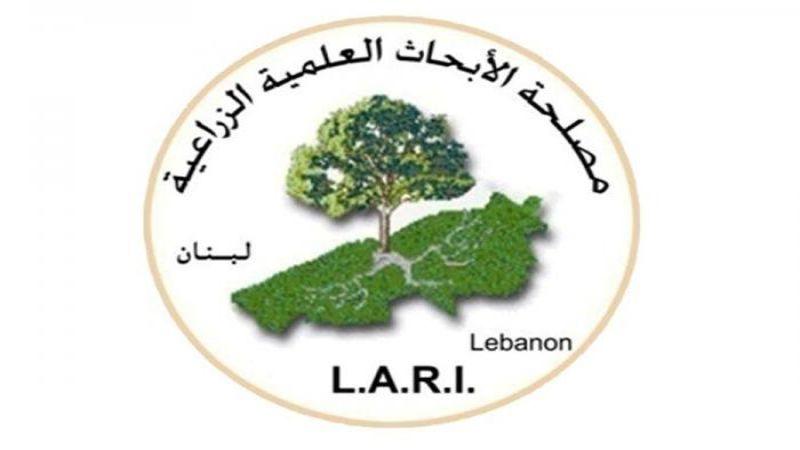 موجة حر في لبنان من بداية الأسبوع المقبل إلى نهايته