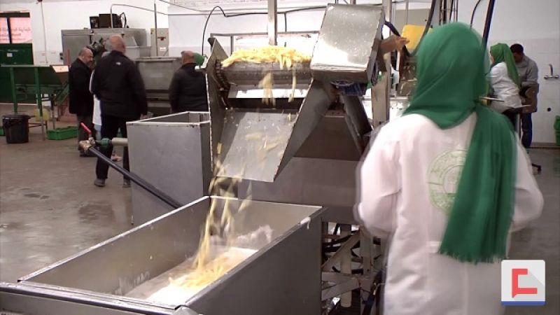 سيدات غزة يبتكرن فرصة عمل جديدة